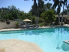 Dr. Carolle Wellness and Retreat Center Pool